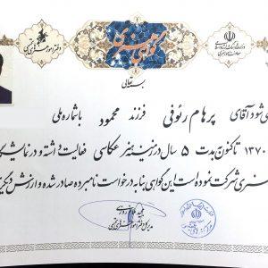 Parham Raoufi Artistic Certificate